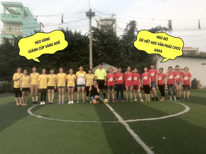 2 đội nữ Heo vàng - Heo đỏ
